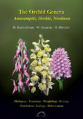 The Orchid Genera Anacamptis, Orchis, Neotinea.